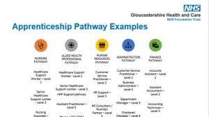Apprenticeship Pathway Examples