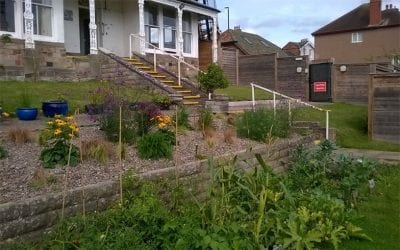 Volunteer transforms garden at Oak House